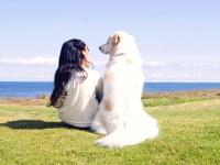 「人間と犬の関係」 が特別なものになる理由