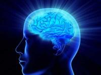 若者に増える「 デジタル認知症 」の危険性