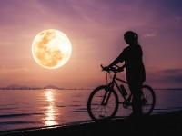 月経の「月」の字は、空の月と関係あるからなの?