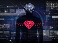 これ本当?「人間の脳は10%しか使われていない」
