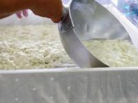絹、木綿、焼きに充填… 豆腐イロイロ、違いはなあに?