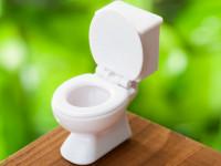 尿意を感じたら?「すぐトイレに行く」vs「少しガマンする」